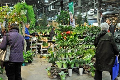 Jill Jensen Botanicals