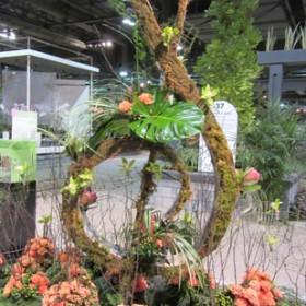 Canadian Institute of Floral Design