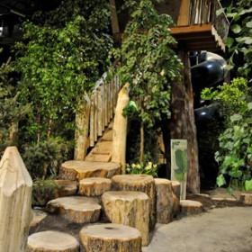 Bienenstock Natural Playgrounds