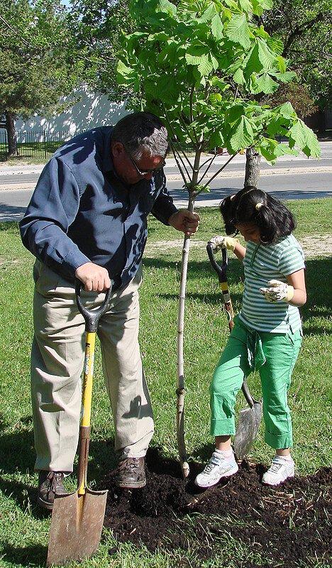 Tree Planting courtesy of Landscape Ontario