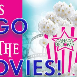 Let's Go To The Movies Banner