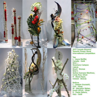 Canada Blooms 2017 Toronto Flower Show International Competition