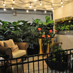 Balcony Garden Showcase: AKa Designs