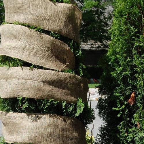 Wrapping Cedars
