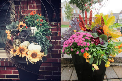 Best Fall Container Contest
