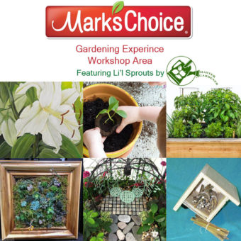 Mark's Choice Workshops