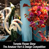 Toronto Flower Show at Canada Blooms