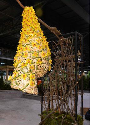 Bruno Duarte 2020 Floral Design Canada Blooms