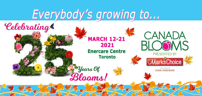 Canada Blooms Newsletter Header Fall 2020