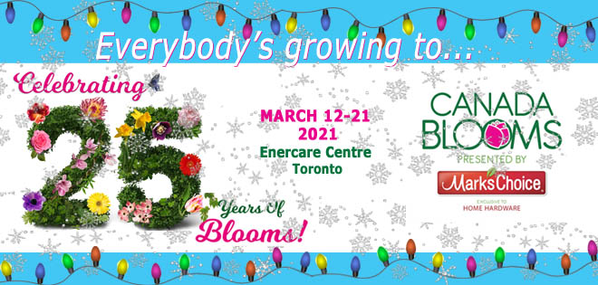 Canada Blooms Newsletter Header Xmas 2020