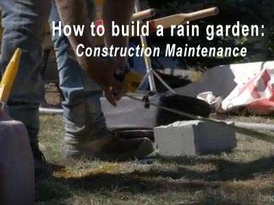 Rain Garden Video 4