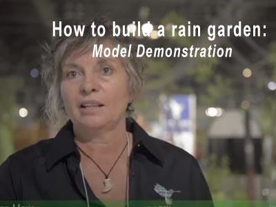 Rain Garden Video 5