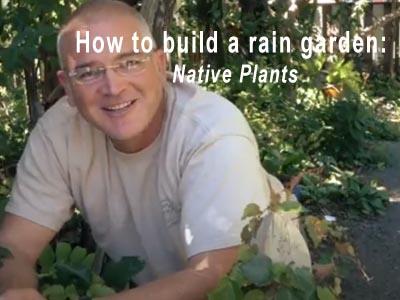 Rain Garden Video 6