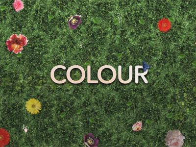 Colour Video