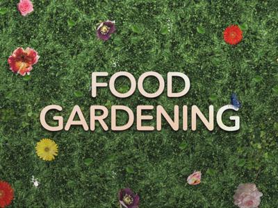 Food Garden Video